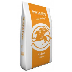 Pegasus Cubes 20kg