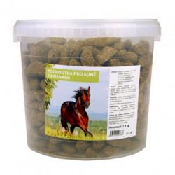Fitmin pochoutky pro koně...