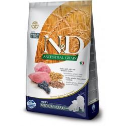 N&D Ancestral Grain Dog...
